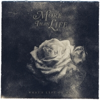 more than life_whats left of me